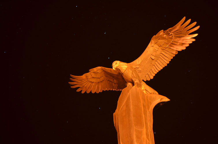 La-Crosse-Riverside-Park-Eagle-At-Night