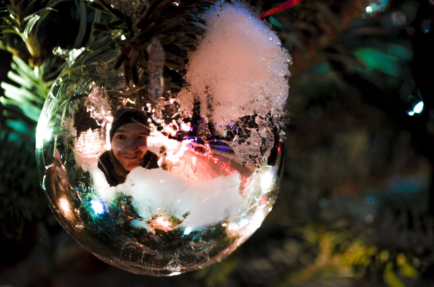 La-Crosse-Rotory-Lights-Ornaments-Self-Portrait