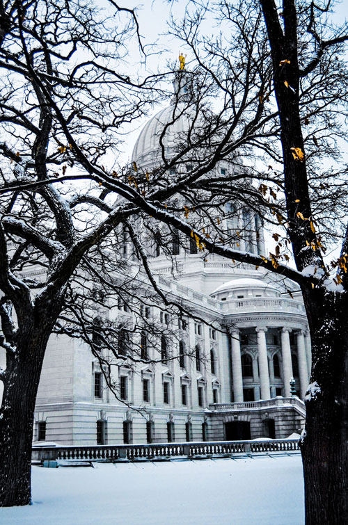 Madison-Capitol-Building-Through-Trees-On-Snow-Day