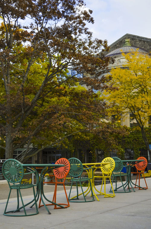 Madison-Memorial-Union-Sunburst-Chairs-Fall